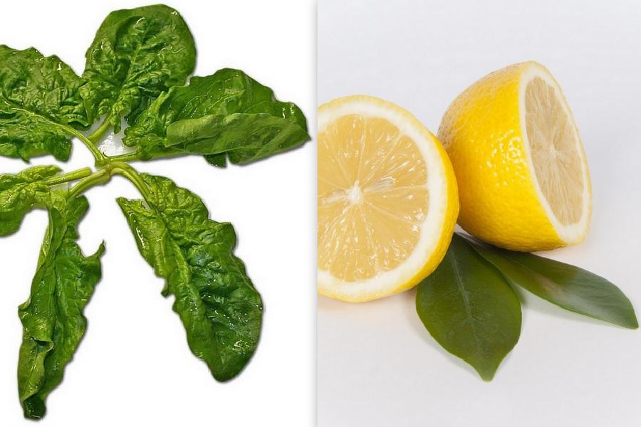 Das Zink aus zum Beispiel Spinat kann nur mithilfe von Vitamin C optimal vom Körper verwertet werden.